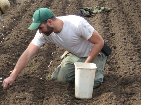 Jesse planting garlic last fall