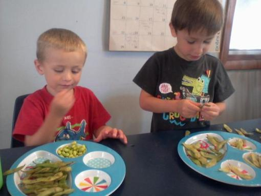"""So here is just one example of how the Vermont Valley family is making a big impact for the Belleville Preschoolers. Last night you sent us those beautiful edamame pods. This morning for morning snack time I boiled some up in salty water and the preschoolers had fun popping out the beans and gobbling them up!  This is Nolan (on left) and Gavin (right) eating the second batch of pods I made because they ate the first batch so fast! Seriously, look at how many empty pods are on Nolan's plate! These are some appreciative bellies! I never tire of hearing the preschoolers say, ""Lindsay we ate them all. Can you make another batch?"" or at lunch time I hear, ""May I have more salad please?"" It amazes me that some people say kids don't eat their vegetables. """