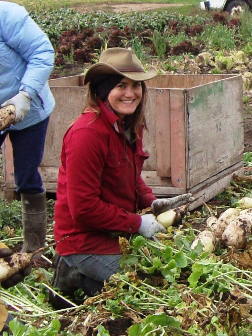 Elisabeth, harvest manager, running the show in the daikon radishes.