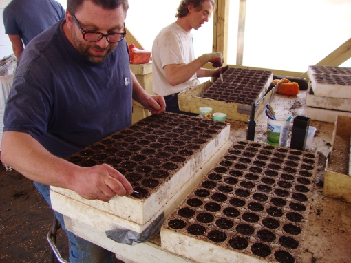 Chris and Brian planting pepper seed into flats.  We planted 5,600 pepper seeds!