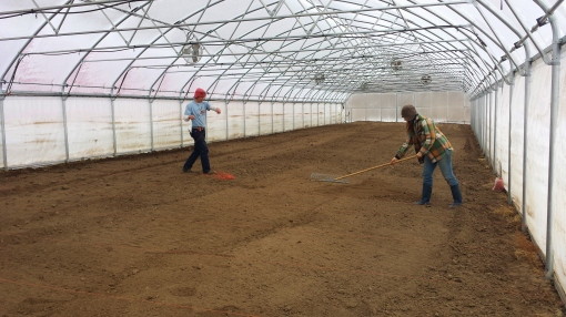Early March. The soil has been tilled in the hoophouse and it's time to prepare the beds for planting.  Brian is marking each bed with string and Elisabeth is doing some precision raking.