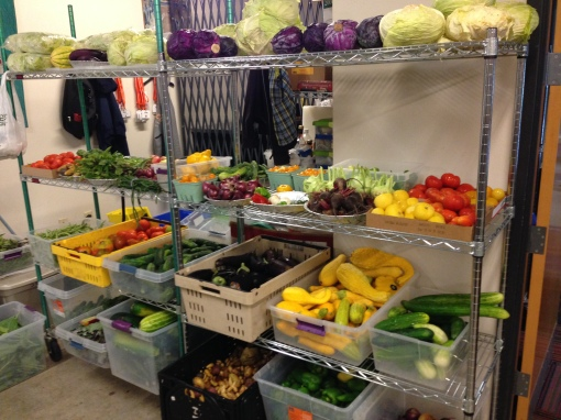 Our fresh vegetables in the Fitz Food Pantry.