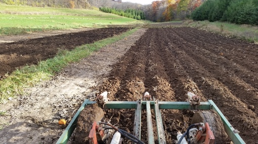 Vermont Valley chisel plow