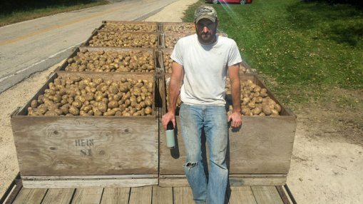 jesse with potatoes