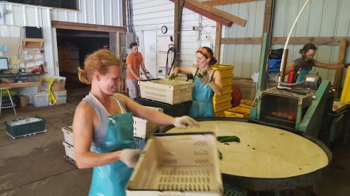 Jenny on the brushwasher