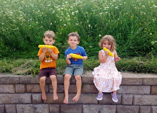 Third generation Vermont Valley farmers. Felix, Paavo and Mischa; Barb and David's grand kids.