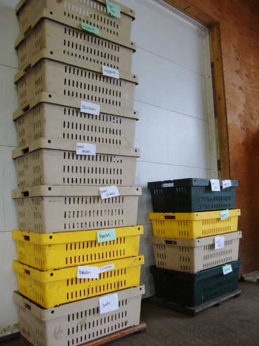 Stack of vegetable donations ready to be loaded on the delivery truck.