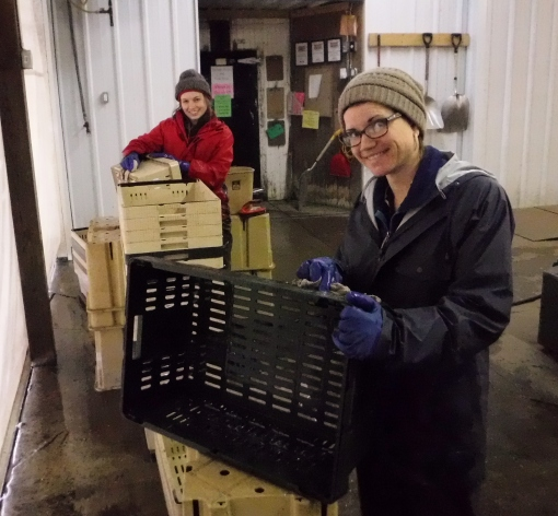 Becky and Abigail washing crates in the cold, wet packing shed. Thousands of crates and containers get washed and sanitized at the end of the season. All the little details that are part of farming.
